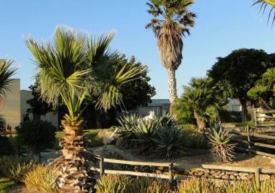 Agriturismo Il Giardino Delle Aloe